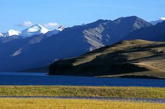 Tso Morari Lake, Ladakh, India