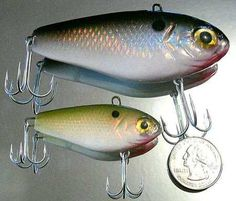 Fishing on pinterest bass fishing rigs and bass boat for White bass fishing lures