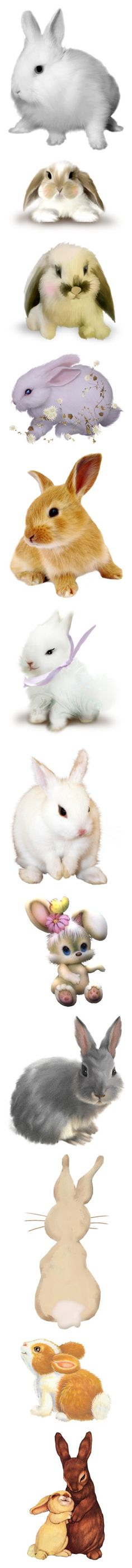 """""""bunnies"""" by pokeasaurousrex ❤ liked on Polyvore featuring animals, rabbit, pet, bunnies, white, easter, backgrounds, filler, brown and spring"""