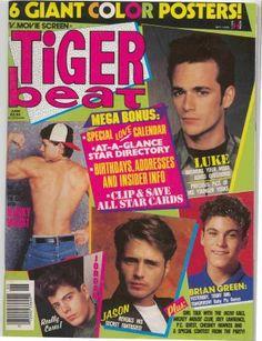 Tiger Beat Magazine ( I know I had this issue)