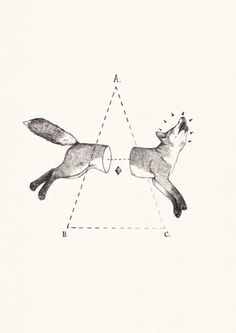 fox bisect