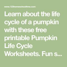 Learn about the life cycle of a pumpkin with these free printable Pumpkin Life Cycle Worksheets. Fun science activity for October in the fall! Pumpkin Seed Activities, Science Activities, Activities For Kids, Pumpkin Life Cycle, Pumpkin Printable, Pumpkin Pictures, A Pumpkin, Life Cycles, Drawing For Kids