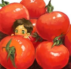 Buono Tomato~