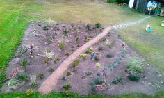 Pszczeli ogród ze ścieżką