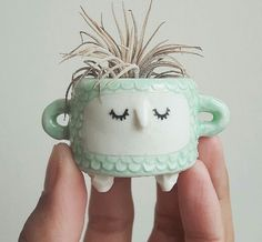 Cute little pot, with a tiny plant.
