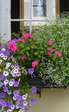 Window Box with pink vinca, mini purple cascading petunias and euphorbia.