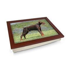 Doberman Dog Lap Tray Personalised Gifts Unique, Unique Gifts, Lap Tray, Doberman Dogs, Laptop Desk, Breakfast In Bed, Cloth Bags, Design Your Own, Wooden Frames