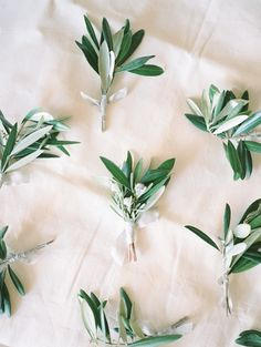 Greenery boutonnieres. Styling, Stationery, Floral Design: Kae & Ales.