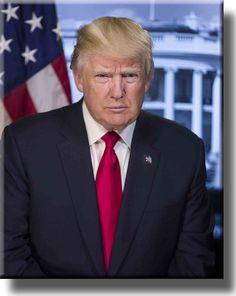For the record, I don't hate Donald Trump the person. I hate Donald Trump the president. Here's why: He's a pathol. Donald Trump, John Trump, Portrait Pictures, Photos, Photographs, Portrait Art, Portrait Photo, Exclusive Club, Presidential Portraits