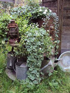 Tee se itse -ideoita puutarhaan : Vanha kaapelikela
