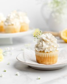 These Lemon and Elderflower Cupcakes are royally delicious! They feature moist lemon cupcakes, and a velvety Elderflower Swiss Meringue Buttercream. Sprinkle Cupcakes, Lemon Cupcakes, Cupcake Flavors, Cupcake Recipes, Cupcake Ideas, Cupcake Photography, Photography Ideas, Sweets Recipes, Desserts