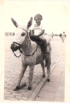 Blaukenberghe 1946, Me sitting on a Stuffed Donkey, photo by a `Beach-Photographer` from the Album of mirjam Bruck-Cohen