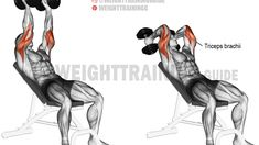 Incline dumbbell triceps extension exercise