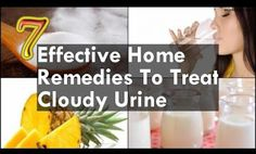 NEWS ABOUT HEALTH: 7 Home Remedies To Treat Cloudy Urine