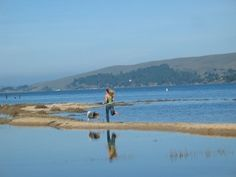 Chicken Ranch Beach!  A little known spot near Inverness, on sheltered Tomales Bay