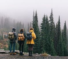Have you been thinking about going camping? You have to plan for a camping trip regardless of how long you will be gone. The information in this article can ensure that your next camping trip is as relaxing and fun as you desire. Trekking, Adventure Awaits, Adventure Travel, Adventure Holiday, Photos Voyages, To Infinity And Beyond, Adventure Is Out There, Oh The Places You'll Go, The Great Outdoors