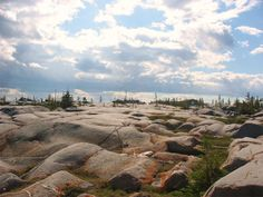 Exotic Canada: See the northern sights in Manitoba's Arctic Tundra, Canada Arctic Tundra, O Canada, The Great White, The Province, Cool Landscapes, Natural Wonders, Places To Go, Exotic, Wildlife