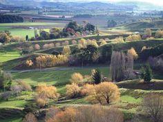 NZ - Gisborne