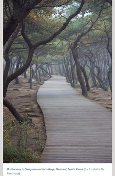 South Korea #travel #travelinspiration #travelphotography #southkorea #YLP100BestOf #wanderlust