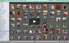 Photo Organizing Tutorial on Vimeo Emma Book, Storage Organization, Organizing, Events Place, Online Apps, Photography Lessons, Organize Your Life, Photo Editing, Photo Wall