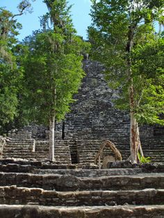 (Cobá in the Spanish language) is a large ruined city of the Pre-Columbian Maya civilization, located in the state of Quintana Roo, Mexico. It is located about 90 km east of the Maya site of Chichen Itza, about 40 km west of the Caribbean Sea, and 44 km northwest of the site of Tulum, with which it is connected by a modern road