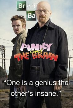 Who's the Genius and who's Insane?