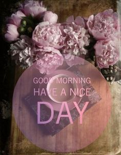 Cute Good Morning Images, Latest Good Morning Images, Good Night Images Hd, Good Morning Beautiful Quotes, Good Morning Picture, Good Morning Flowers, Good Morning Good Night, Morning Pictures, Good Morning Thursday