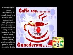 caffè ganoderma - YouTube