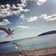 Pause déjeuner au soleil #Toulon #Mourillon