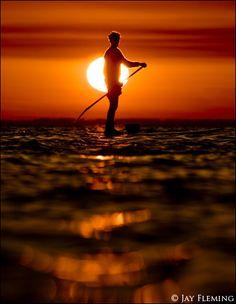Chesapeake Stand Up Paddleboard © JPF
