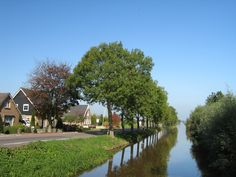 Netherlands Landscape | photo of Netherlands landscape