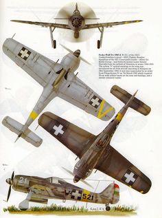 Focke Wulf 190 in Hungarian service