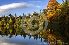 Photo about Gold fall. Landscape in a sunny autumn day. Image of autumn, color, europe - 78889363 Fall Landscape, Autumn Park, Sunny Days, Sky, Stock Photos, Seasons, Water, Gold, Blue