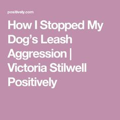 How I Stopped My Dog's Leash Aggression   Victoria Stilwell Positively