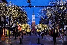 Burlington Vermont Shopping| Burlington Restaurants | Things to Do in VT