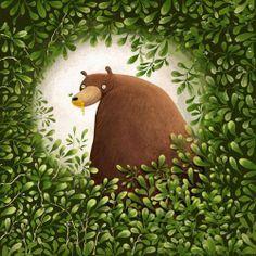 Es desperten els óssos / Se despiertan los osos / Bears They wake up