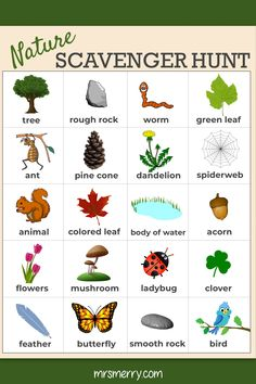 Outdoor Scavenger Hunt - Nature Activity for Kids - Free Kids Printable - Mrs. Merry Free Nature Scavenger Hunt for kids. Enjoy the outdoors and get some fresh air while you find all of these outdoor items. Nature Activities, Outdoor Activities For Kids, Outdoor Learning, Summer Activities, Preschool Activities, Kids Learning, Preschool Schedule, Science Resources, Educational Activities