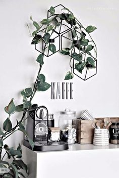 Marvelous Indoor Vines and Climbing Plants Decorations 47 Tea Station, Coffee Bar Station, Home Coffee Stations, Coffee Bar Home, My Coffee, Coffee Bars, Coffee Corner Kitchen, Decoration Plante, Coffee Shops