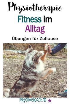 So hältst Du Deinen Hund mit leichten Übungen im Alltag fit. | Physiotherapie | Fitness | Gesundheit | Hund | thepellmellpack.de