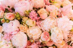 Clarissa Rezende » ideas to bloom » page 5