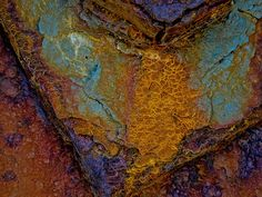 beach rust # 1 | As seen in Green + Rust | Gavin Kerslake | Flickr