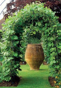 Veg Garden, Vegetable Garden Design, Edible Garden, Vegetable Gardening, Vegetables Garden, Garden Beds, Easy Garden, Veggies, Container Gardening