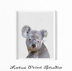 Koala Bear Print, Nursery Decor, Koala Wall Art, Large Printable Poster, Australian, Kids Room Decor, Nursery Animal, Animal Wall Art, #009