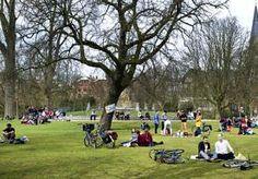24-May-2013 14:26 - WIFI MOET PARKEN IN DE STAD HIP MAKEN. Met een nieuwe wifiweide in het Rembrandtpark hoopt de gemeente bedrijven te enthousiasmeren ook andere Amsterdamse parken van gratis draadloos…...