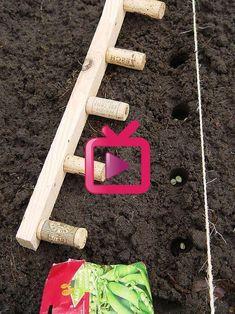 Wine cork on a wooden strip # wooden strip cork - . Wine cork on a wooden strip strips # wine cork - - Jardin truc et astuces - The most beautiful furnis. Garden Beds, Vegetable Garden, Garden Art, Garden Design, Gardening Vegetables, Veggie Gardens, Dream Garden, Back Gardens, Outdoor Gardens