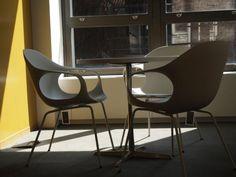An Elephant in NY - Kristalia #designchair #homedecor #indoorfurniture