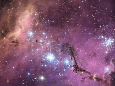 Hubble Sees Hidden Treasure in Large Magellanic Cloud