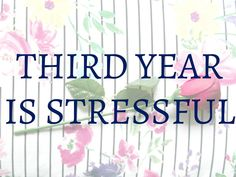 Third Year Is Stressful - Megan Time Blog
