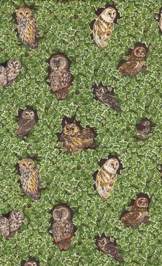 "Vintage Crafts SuppliesOwls in Ivy Fabric by Makower by NookCove, $10.99  100% Cotton repeating pattern. I've also scanned the back of the fabric which, to me, is important as to the quality of the fabric.You'll see in the selvage the name of the print ""Owls in Ivy"" and the fabric mill is noted. The fabric is 45"" wide. There is 1.5 yards and is sold as such. This is a beautiful ivy-green print with various poses of owls framed by the ivy."