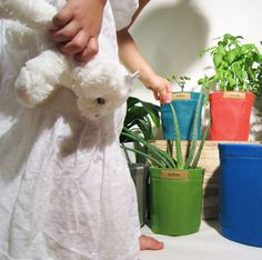 Jardisac: The Breathable Garden Pot